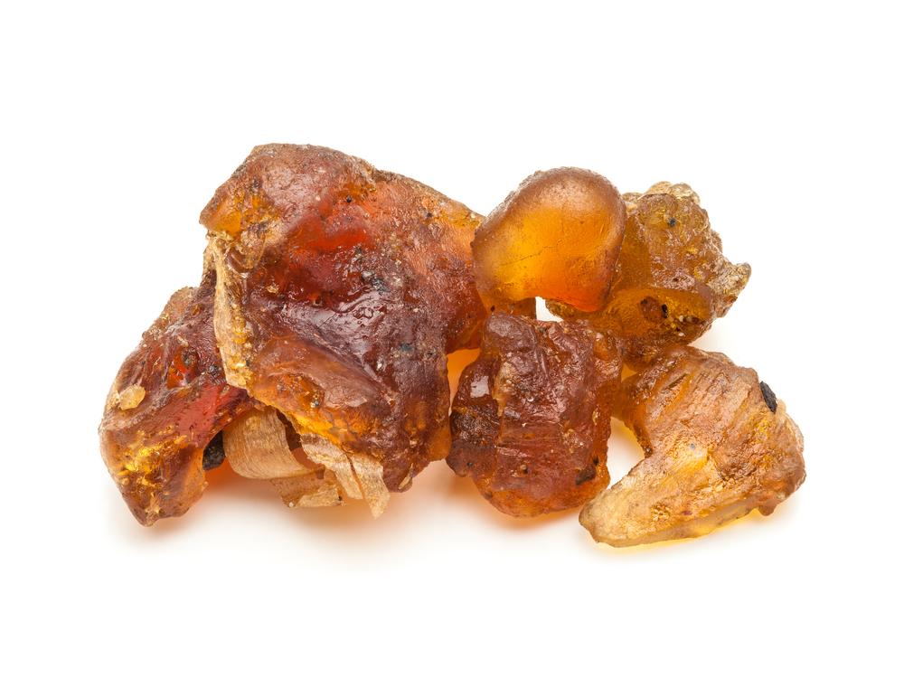 commiphora-mukul-guggul