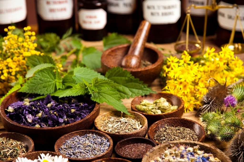 Most Powerful Herbs for Overall Health