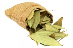 Sage or Tejpatta