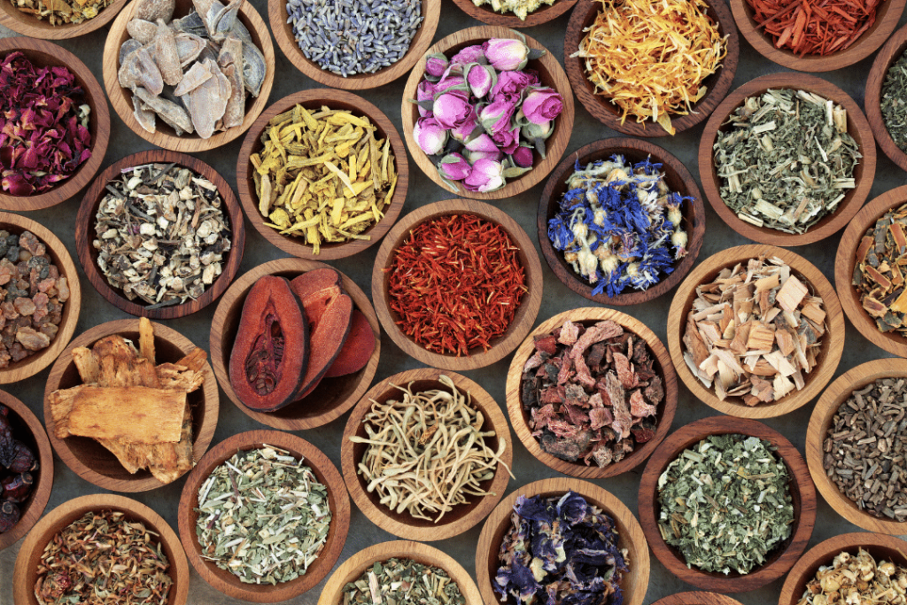 5 Best Healing Herbs You Should Know